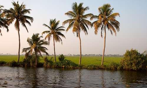 Keralan takavesiä.