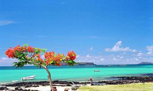 Mauritius, kuva: Subzi73 / Flickr.com.