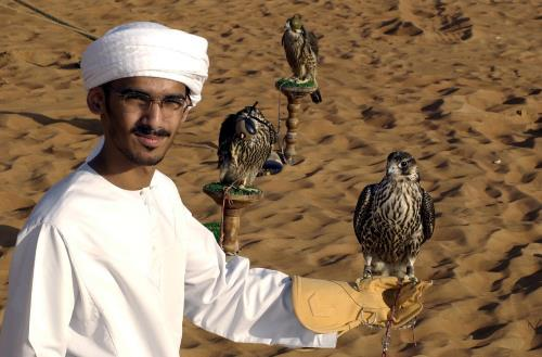Ras al Khaimah, mies ja metsästyshaukka