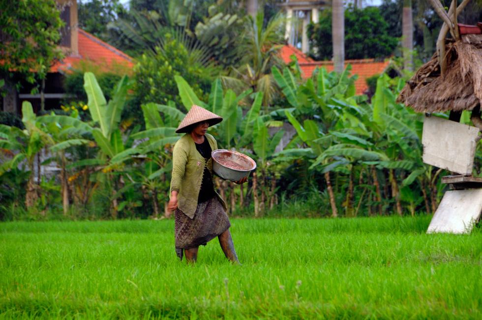 Bali, Indonesia. Kuva: Bart Speelman, Flickr.com