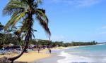 playa-dorada-jeff